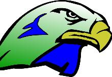 Skyhawk head